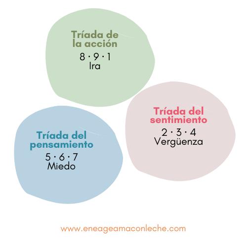 triadas_eneagrama_fijaciones